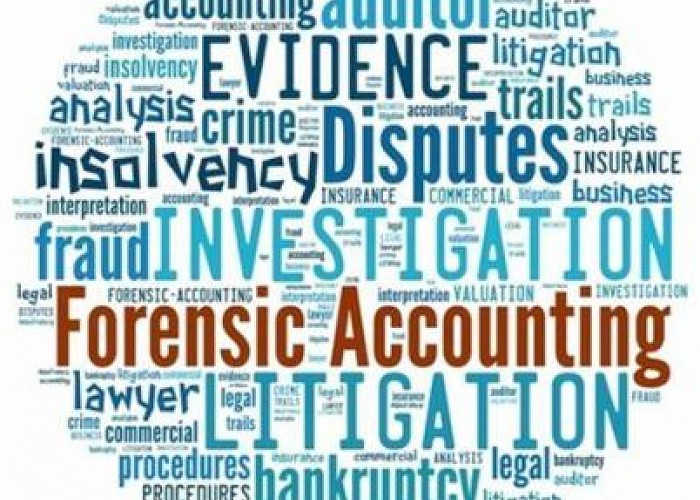 Forensic Accounting and Fraud Investigation for Non-Expert